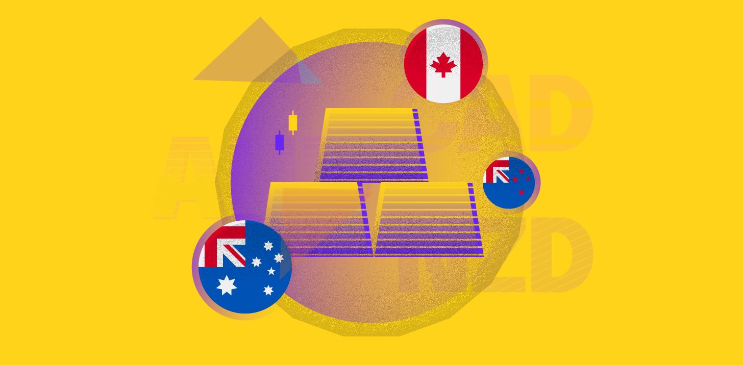 Understanding commodity currencies